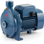 Pedrollo CP .25-2.2 kW Water Pump