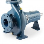 Pedrollo FG Water Pump
