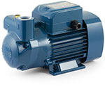 Pedrollo model CK self priming pump