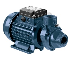 Ebara PRA peripheral impeller pumps